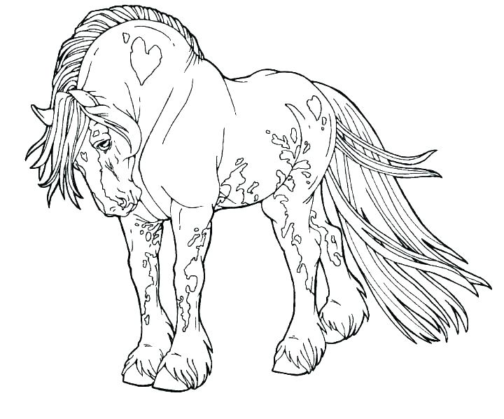 720x598 Coloring Pages Of Horses Barrel Racing Coloring Pages Horses