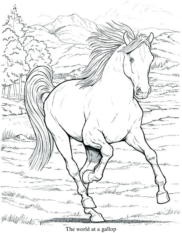 584x750 Coloring Pictures Horses Coloring Of Horses Running Horse Photo