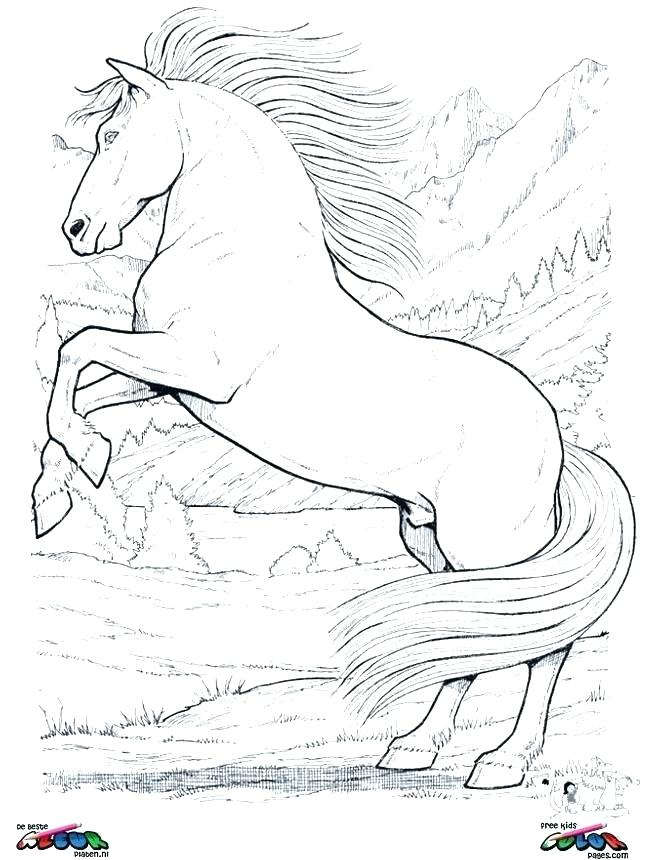645x860 Realistic Horse Coloring Pages Horses Coloring Page Mustang Horse