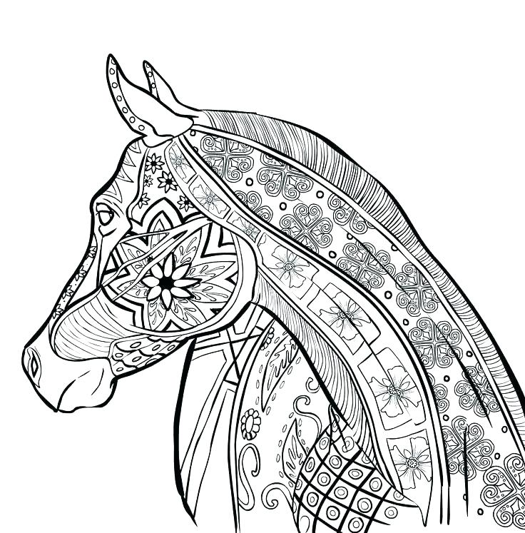 736x747 Carousel Animals Coloring Pages Free Coloring Pictures Of Horses