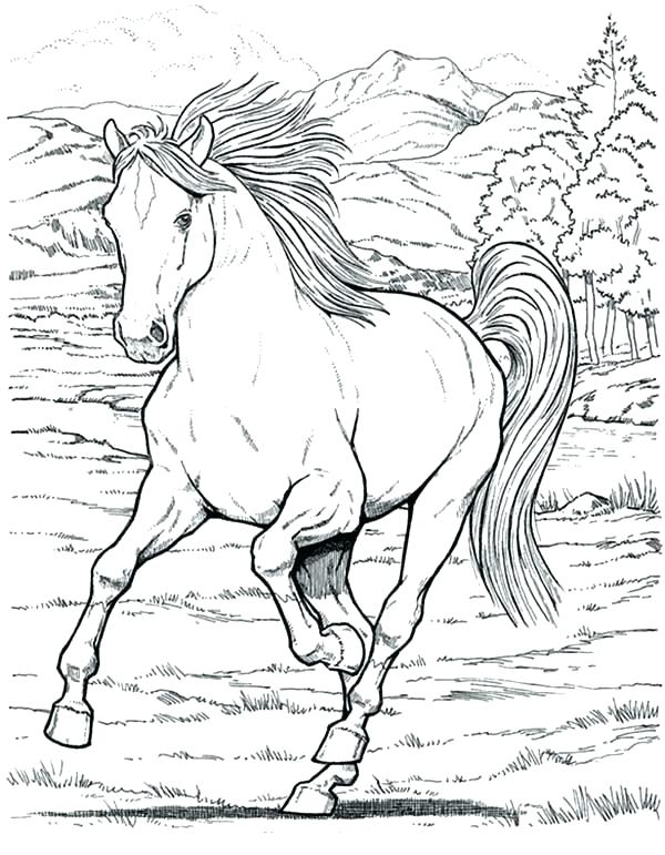 600x771 Realistic Horse Running Coloring Pages