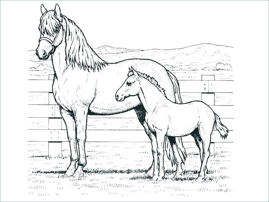 878x659 Running Horse Coloring Pages