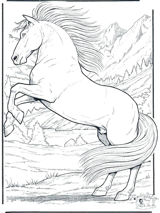 660x880 Coloring Pages For Horses Printable Coloring Pages Of Horses Free