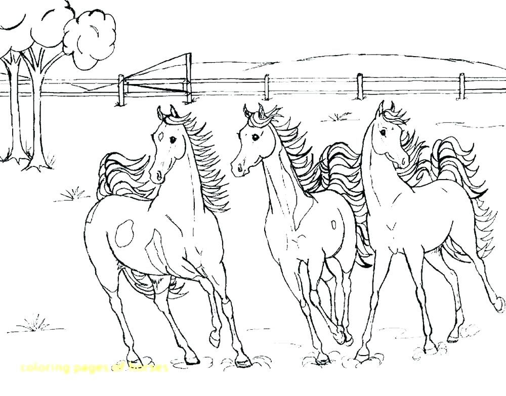 1000x783 Coloring Pages Horse Coloring Pages Horses Realistic Horse