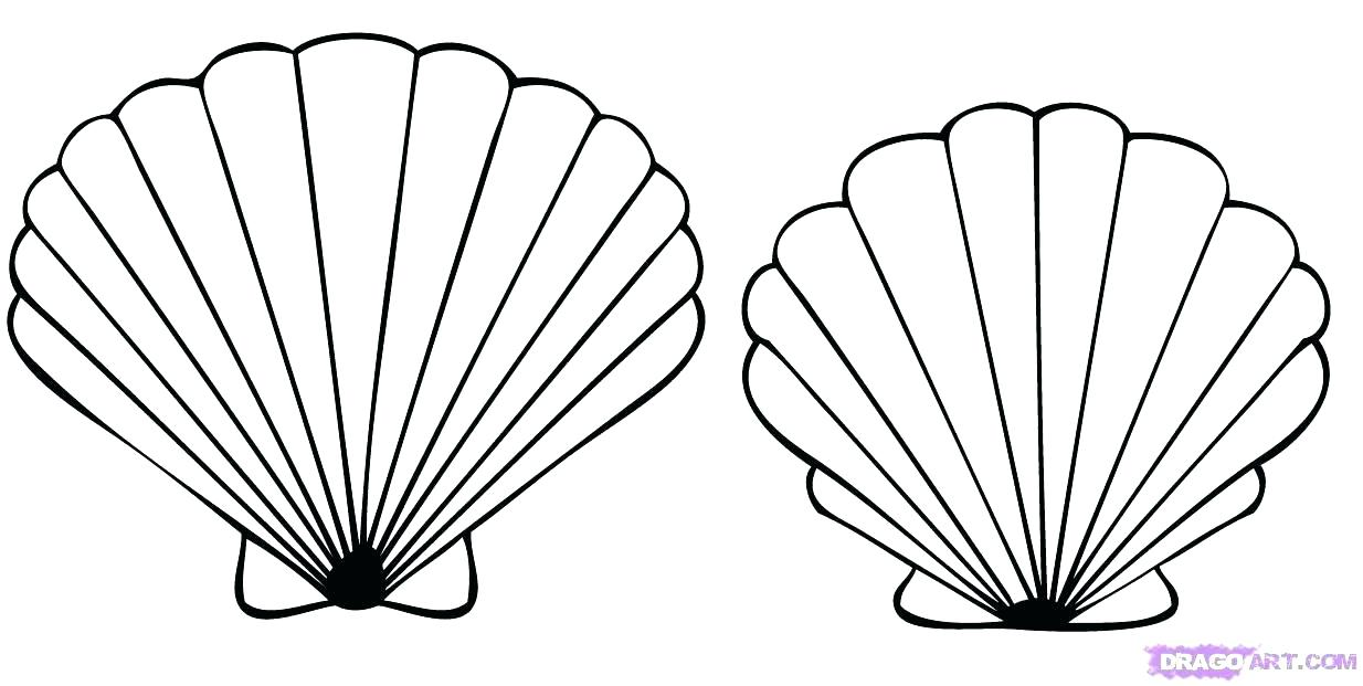 1234x621 Seashell Coloring Page Sea Shells Coloring Pages Info Amazing