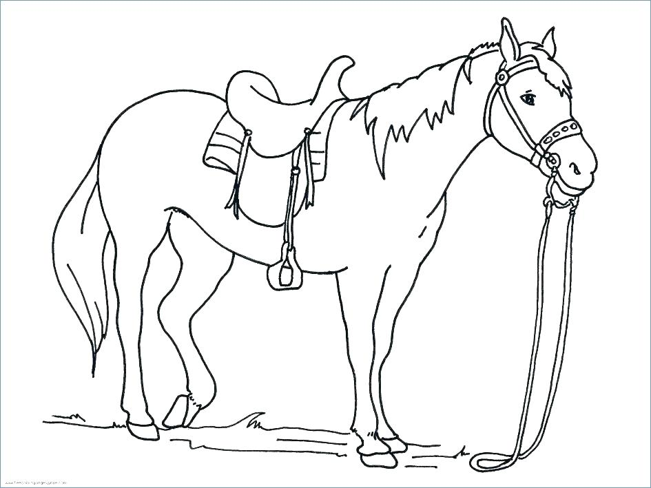 945x709 Colouring Pages Horses Jumping Princess With Horse Coloring Page