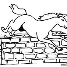 220x220 Jumping Horse Coloring Pages