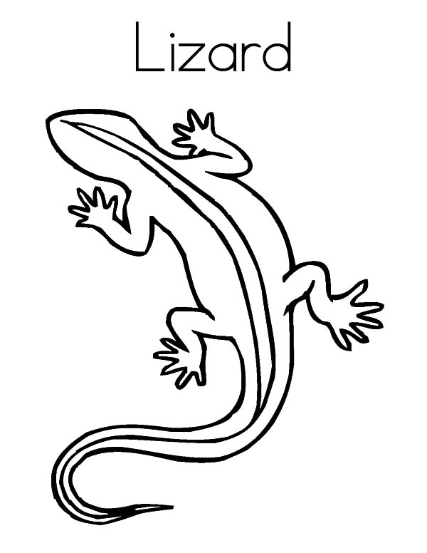 600x776 L Is For Lizard Coloring Pages