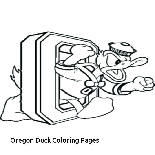 600x600 Nba Logos Coloring Pages Logo Coloring Pages Ducks O Logo Coloring