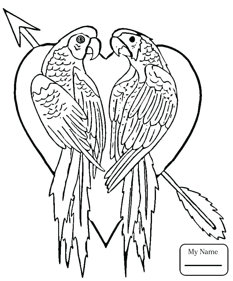 765x922 Love Birds Coloring Pages Love Bird Coloring Pages Love Birds