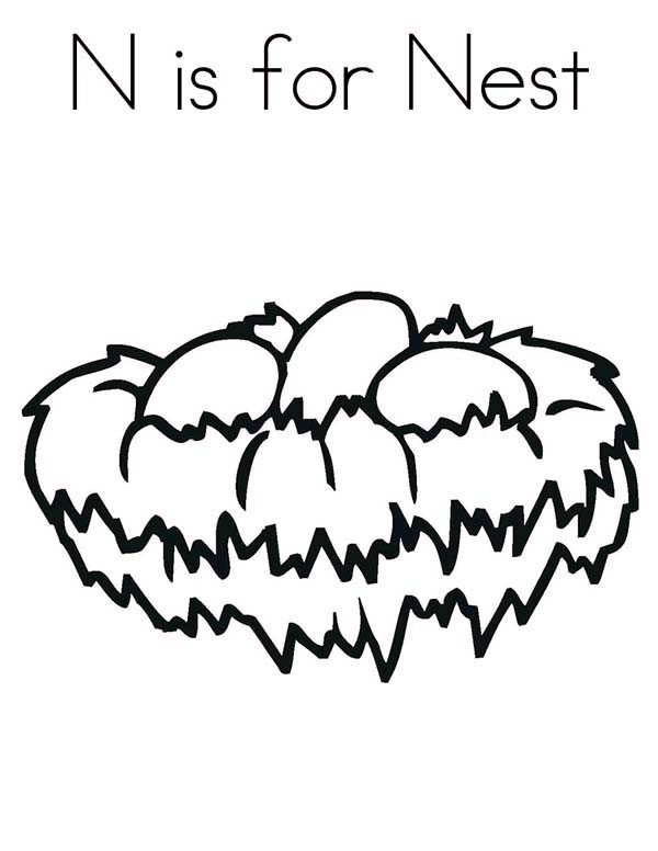 600x776 N Is For Bird Nest Coloring Pages Best Place To Color