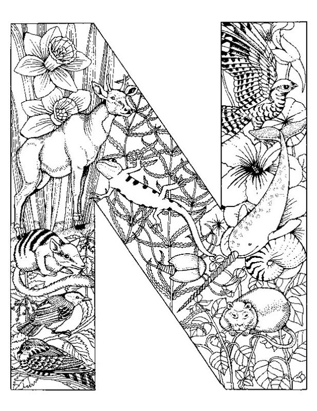 618x800 Alphabet Animal Coloring Pages N Projects To Try