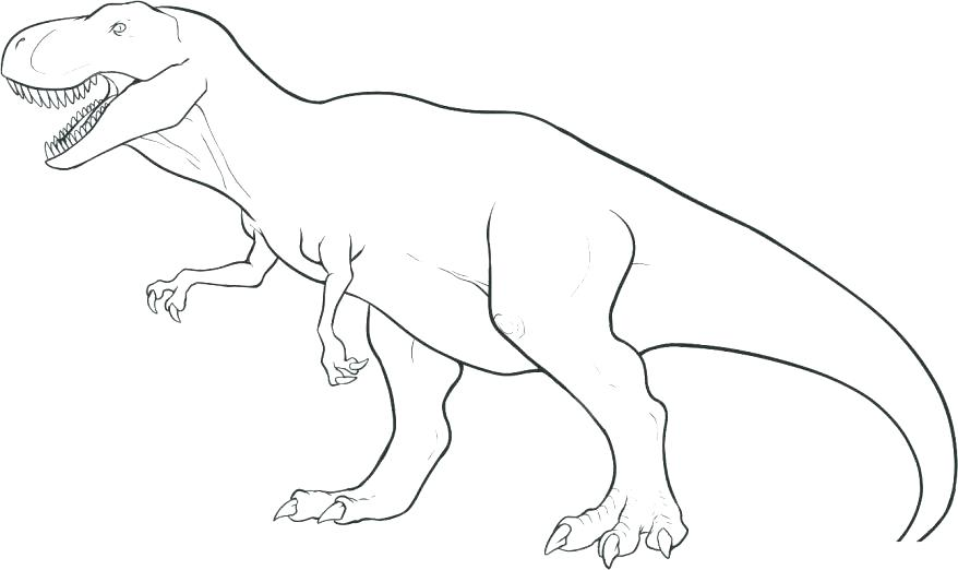 878x522 Triceratops Coloring Pages Stegosaurus Coloring Page Pages
