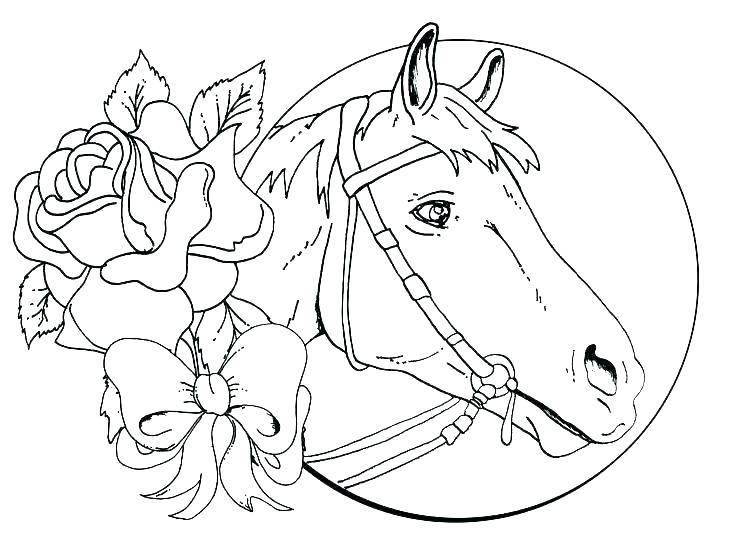 736x551 Coloring Pages For Horses Horse Head Coloring Page Horse Head