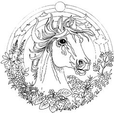 236x233 Coloring Pages Of Animals Hard Color Bros