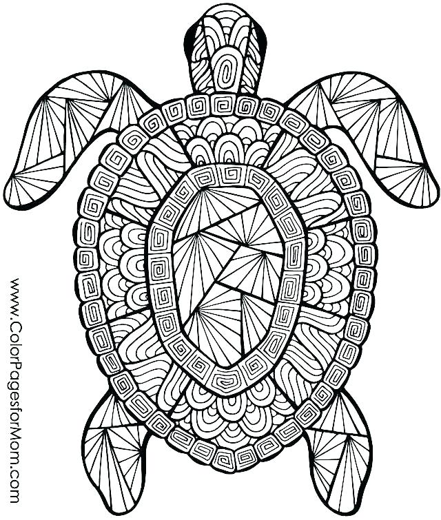 640x755 Free Coloring Pages Animals