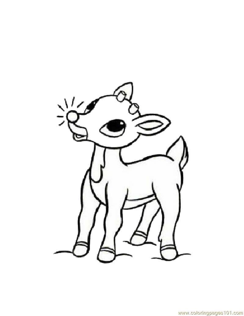 800x1034 Baby Deers Coloring Page