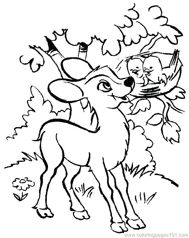 630x794 Baby Deer Coloring Pages Baby Coloring Page Mother And Baby Deer