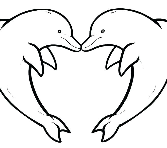 678x600 Baby Dolphin Colouring Pages Coloring Pics Col Baby Dolphin