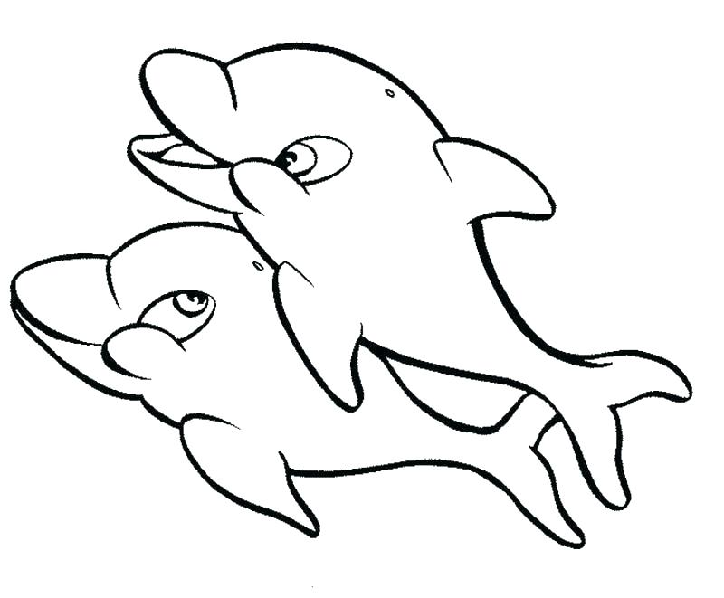 800x661 Baby Dolphin Colouring Pages Free Coloring Cute Panda Images Dol