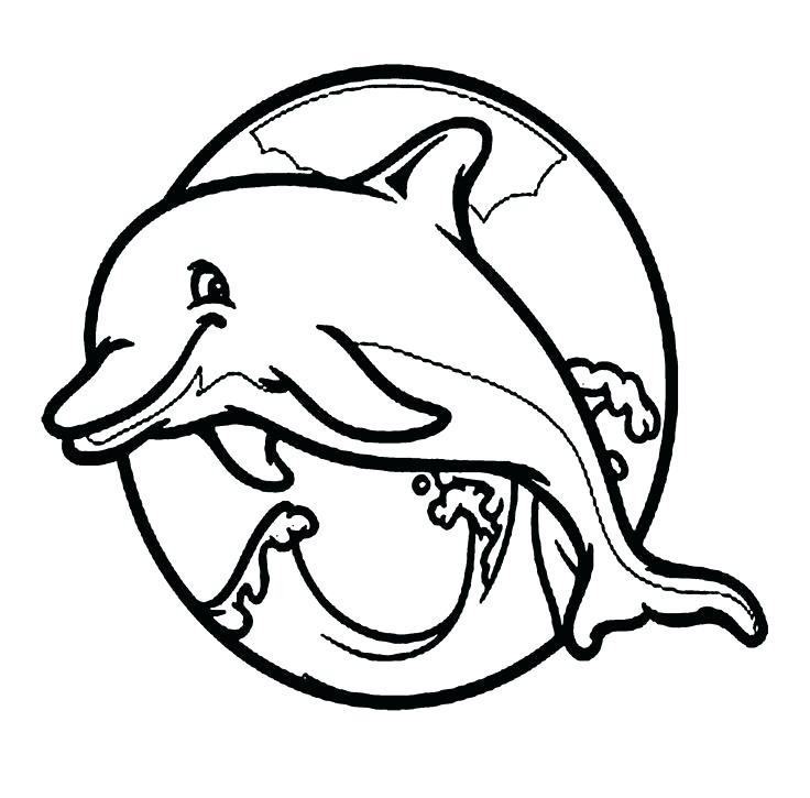 736x725 Cute Dolphin Coloring Pages Baby Dolphin Coloring Page Fan Picture