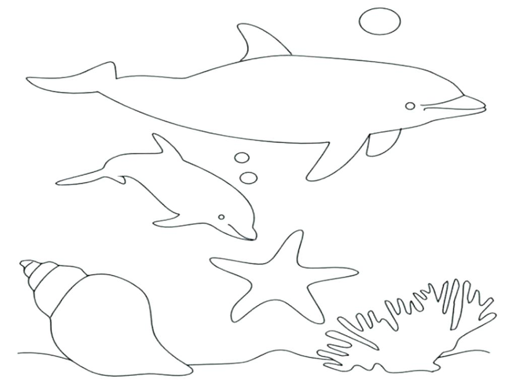 1024x767 Dolphins Coloring Pages Baby Dolphin Coloring Pages Stock Free