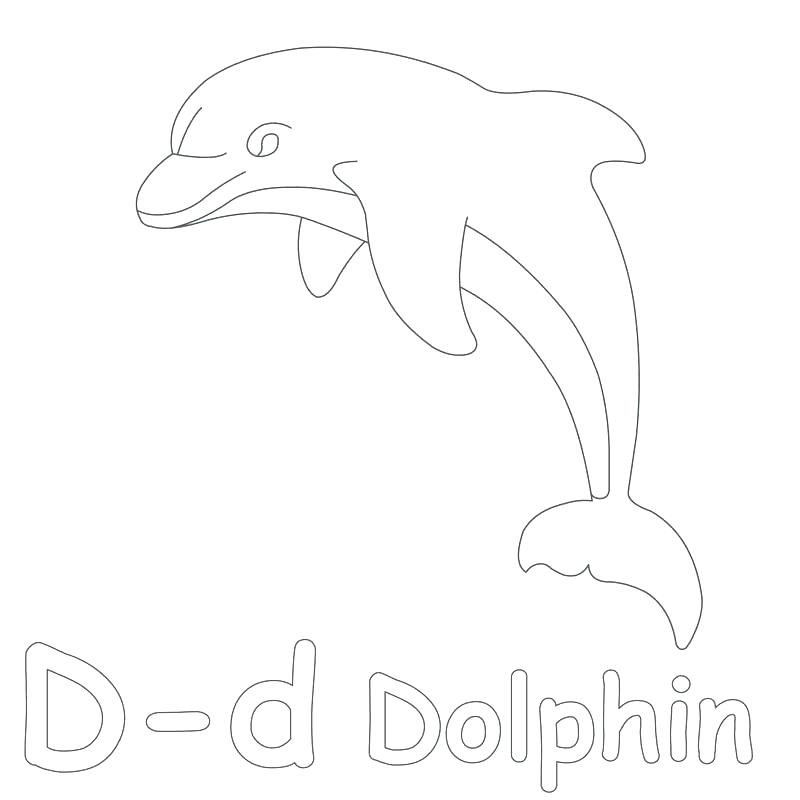 800x800 Perfecto Coloring Pages Of Baby Dolphins
