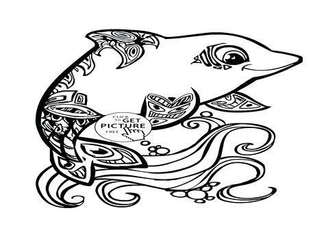 476x333 Baby Dolphin Coloring Pages Baby Dolphin Coloring Pages Page Kids