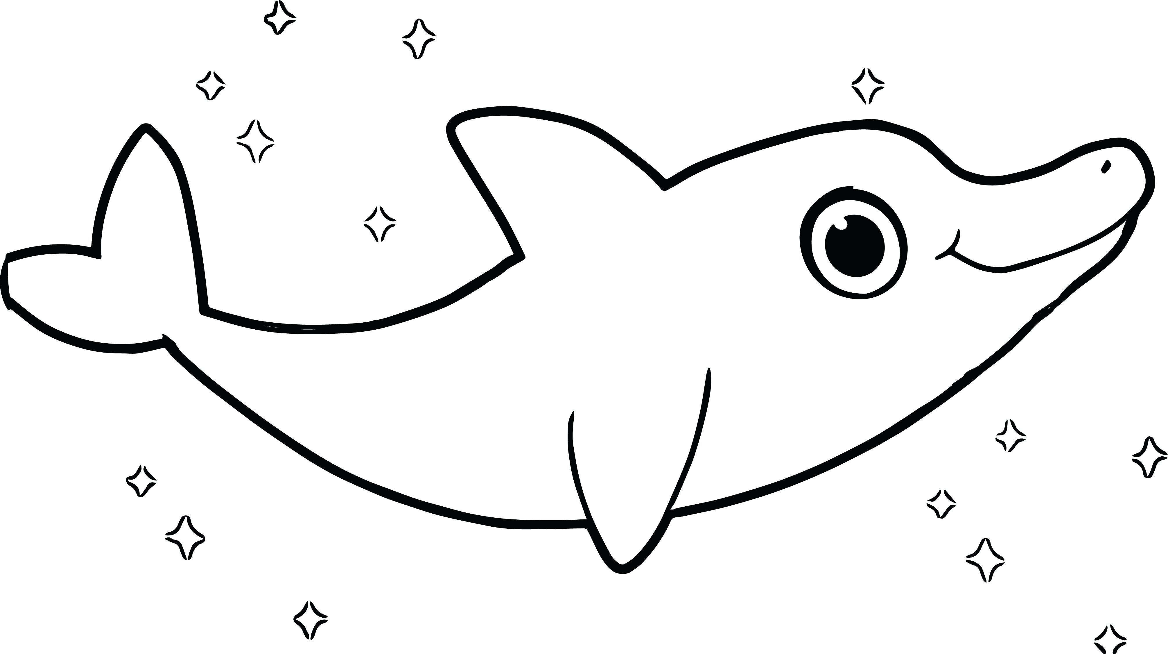 4021x2250 Baby Dolphin Coloring Pages Download
