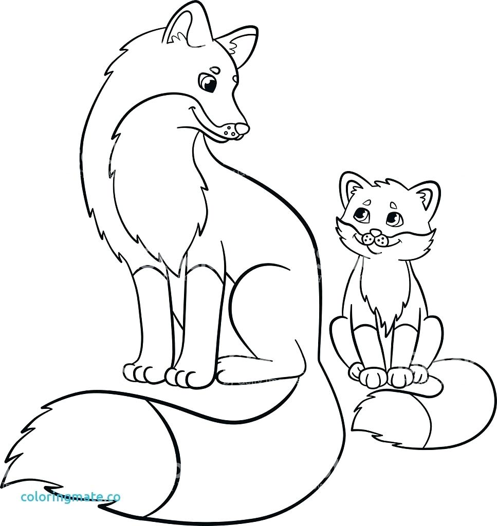 967x1024 Baby Fox Coloring Pages