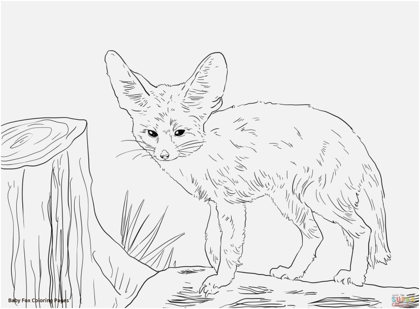 827x609 Fox Coloring Sheet Photo Simplistic Baby Fox Coloring Pages Free