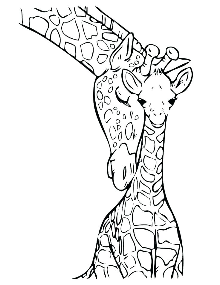 736x952 Giraffe Color Page Baby Giraffe Pictures To Color Giraffe Coloring
