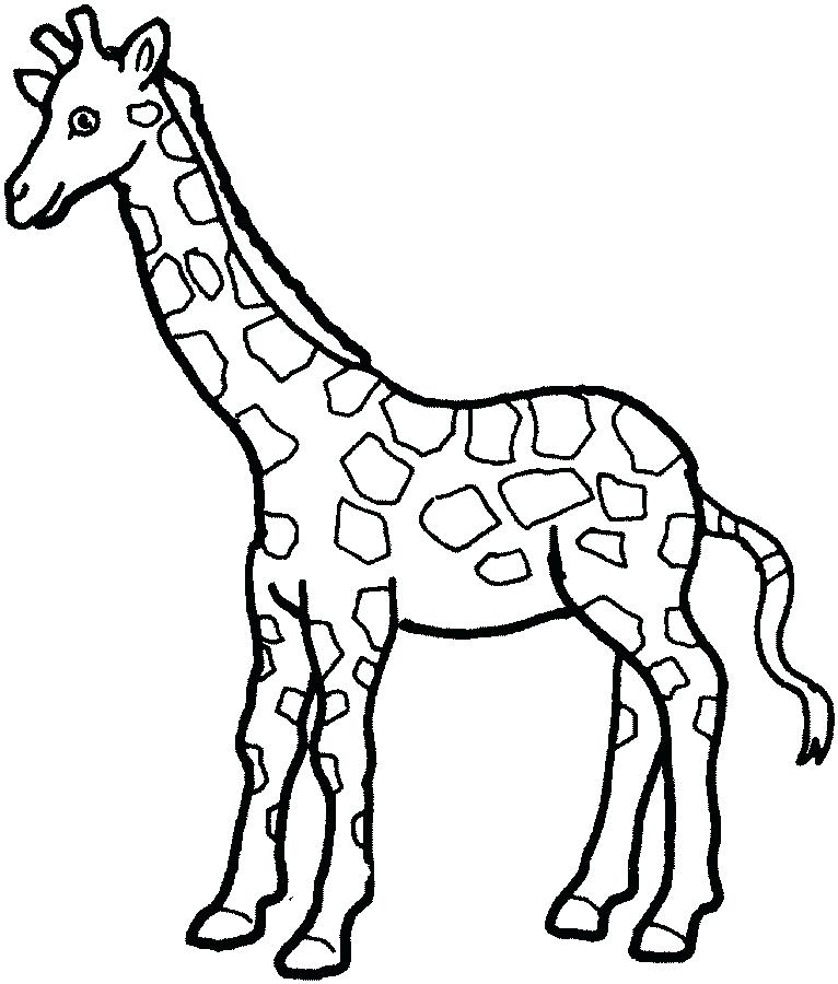766x900 Baby Giraffe Color Pages Printable Coloring Best Photos Of Giraffe