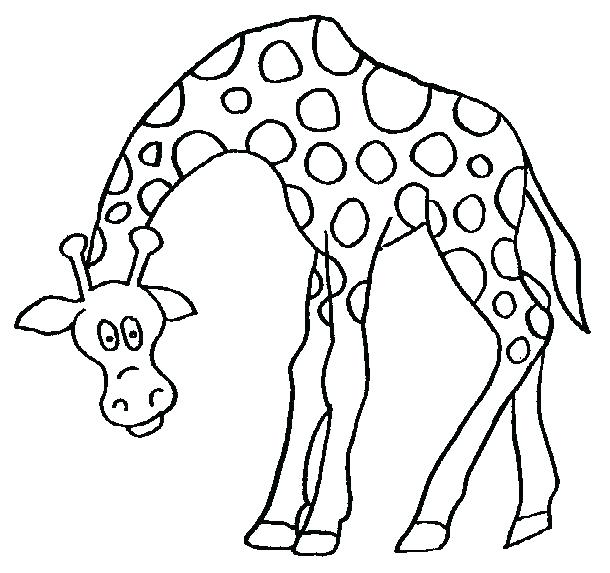 610x573 Giraffe Color Page Giraffes Coloring Pages Giraffe Coloring Book