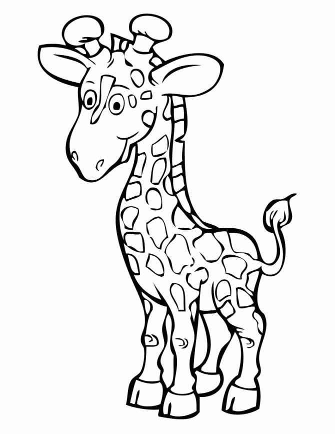 670x867 Giraffe Coloring Page Best Of Free Printable Giraffe Coloring