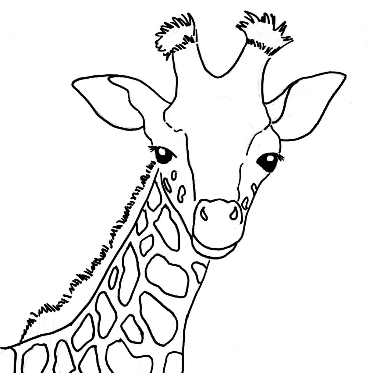 1224x1224 Marvelous Babyfe Coloring Pages Color Cute Printable Baby Giraffe