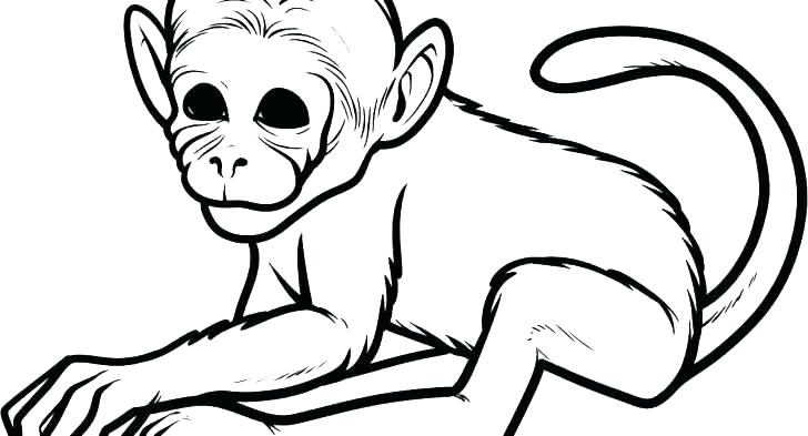 728x393 Printable Monkey Coloring Pages Monkey Coloring Pages With Cartoon