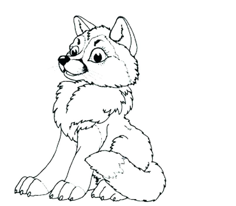 805x704 Wolf Pup Coloring Pages Baby Wolf Pup Coloring Husky Dog Pages