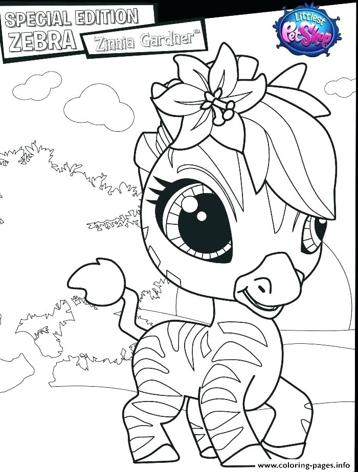 Coloring Pages Of Baby Zebras