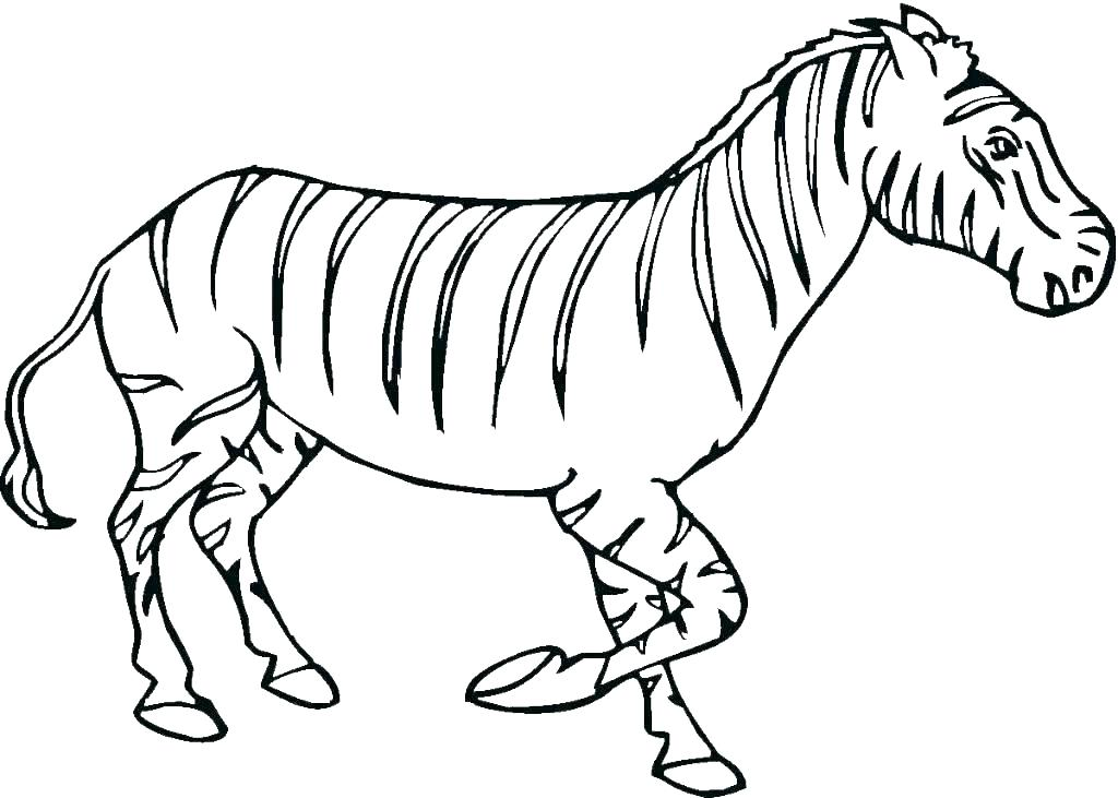 1024x731 Coloring Page Of A Zebra Cute Zebra Coloring Pages Baby Zebra