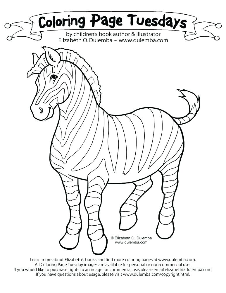 773x1000 Zebra Color Page Baby Zebra Coloring Pages Zebra Color Page