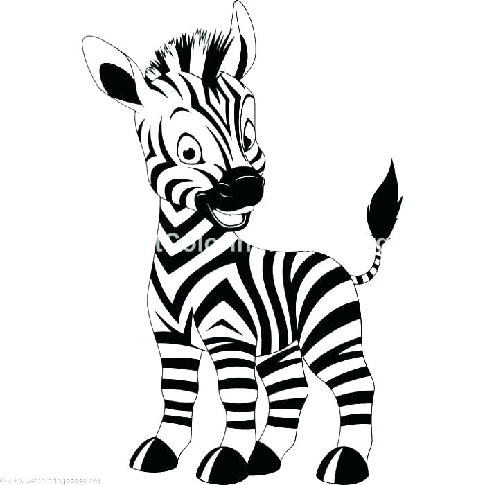 700x700 Zebra Coloring Page Coloring Pages Of Zebras Free Coloring Page