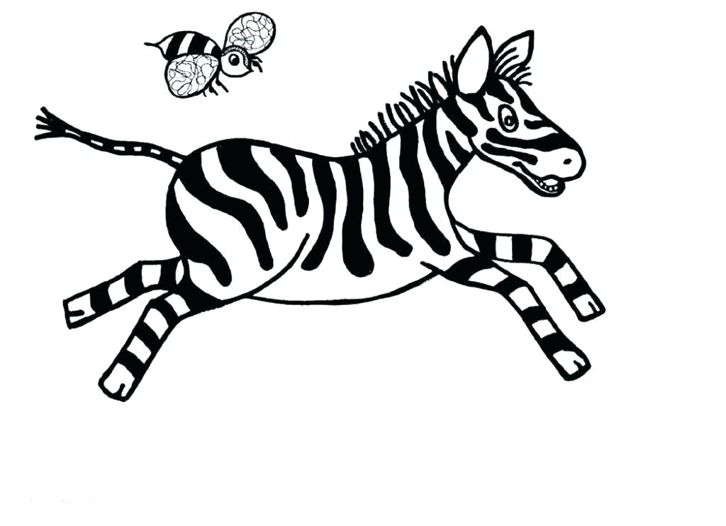1024x743 Baby Zebra Coloring Pages Baby Zebra Coloring Pages Color Zebra