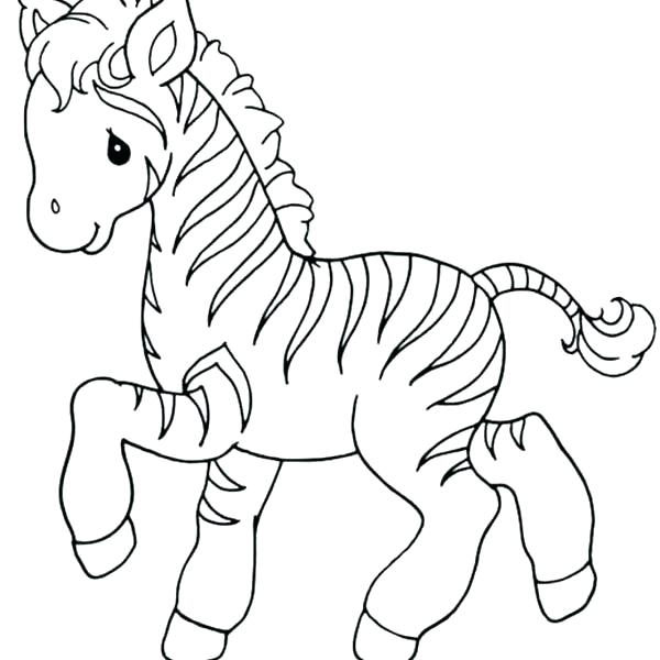 600x600 Baby Zebra Coloring Pages