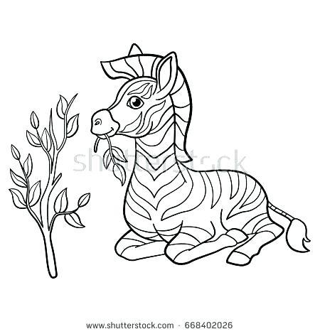 450x470 Baby Zebra Coloring Pages Zebra Color Sheet Z For Zebra Coloring