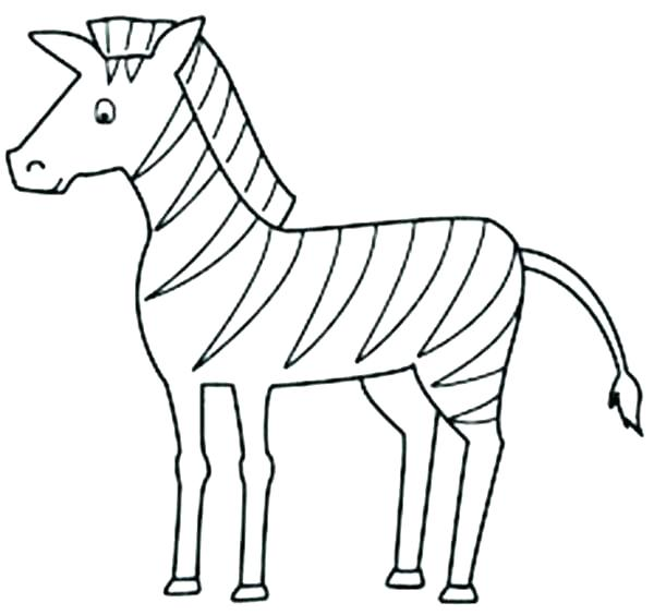 600x564 Baby Zebra Coloring Pages Zebra Coloring Pages For Kids Printable