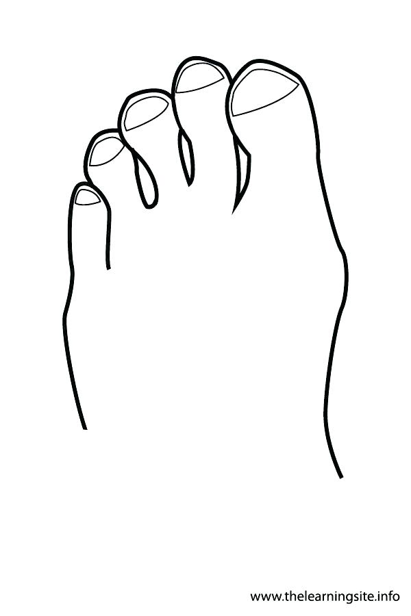 600x900 Body Outline Coloring Page Body Coloring Pages Body Outline