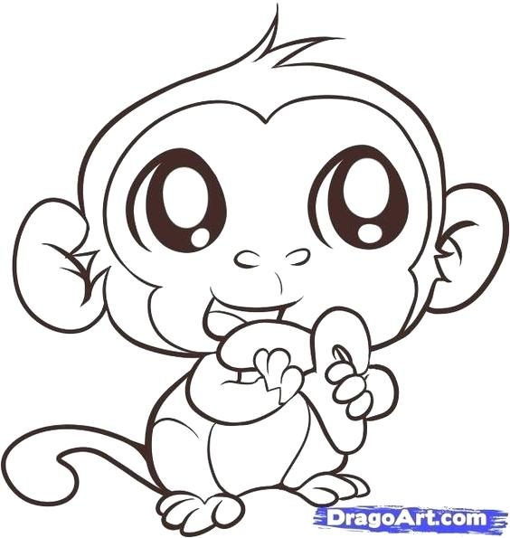564x595 Monkey Color Page Cute Monkey Coloring Pages To Print Very Happy
