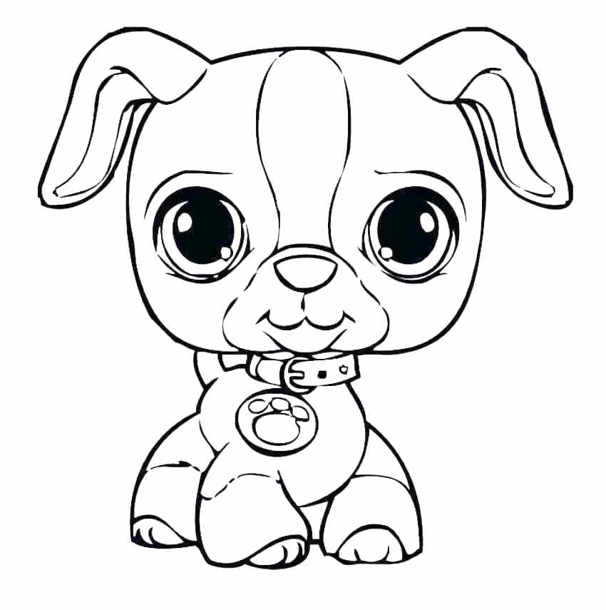 850x855 Puppy Color Page Puppy Color Page Best Puppy Coloring Pages Ideas