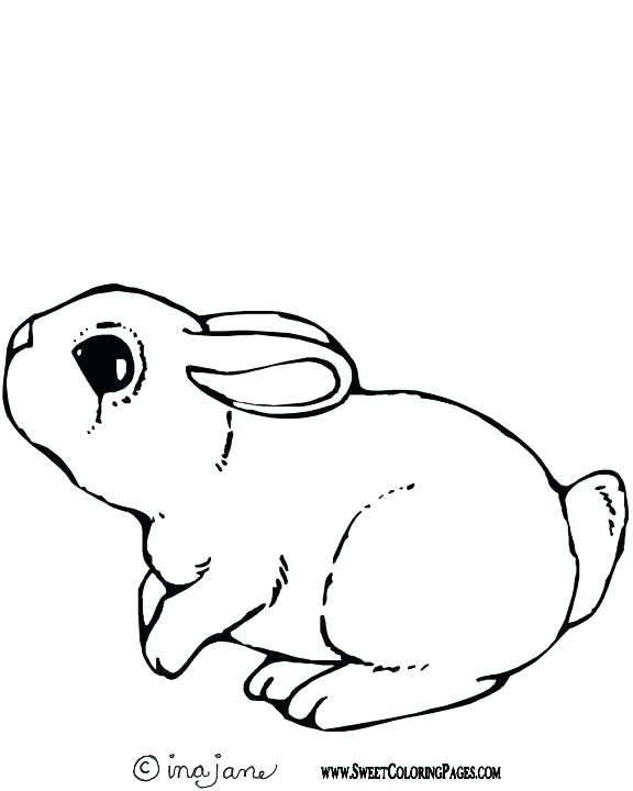 576x720 Cute Bunny Colouring Pages Bunny Rabbit Coloring Pages Printable